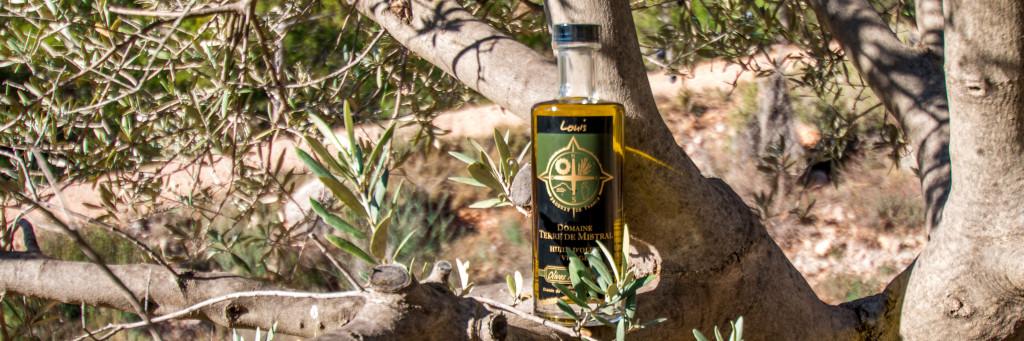 Au domaine Terre de Mistral nous réalisons notre huile d'olive avec nos olives et un pressurage maison réalisé dans nôtre Moulin à huile