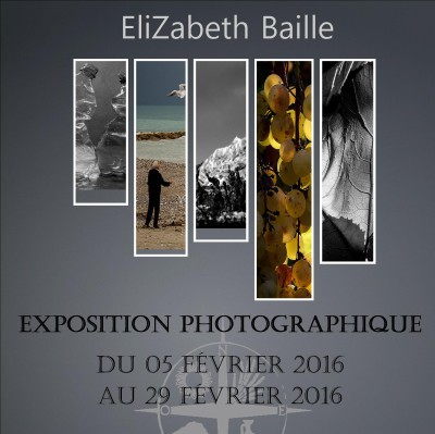Terre_de_Mistral_blog_expo_elizabeth_baille