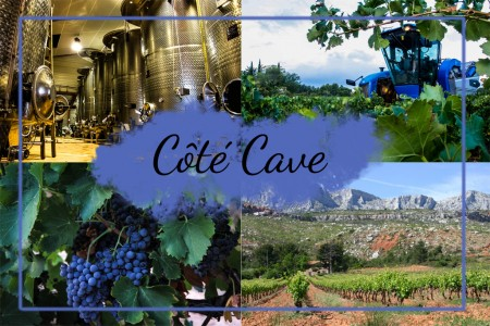COTE CAVE copie
